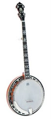 Banjo five Strings (de 5 cuerdas y 22 trastes)
