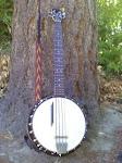 Banjo bajo