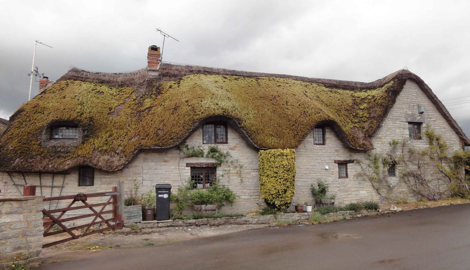 Europe au pif touring in glastonbury - The thatched cottage ...