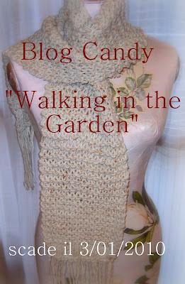 Partecipo al blog candy di Simona