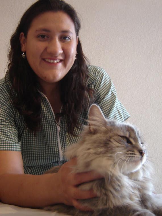 Terapia reiki en mascotas