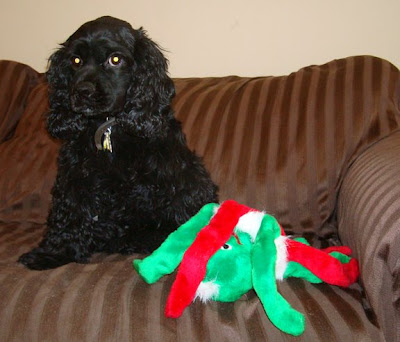 Fleece Tug Toys For Dogs