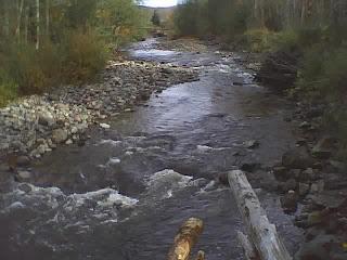 Mashell river