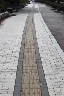 歩道に続く点字ブロックの写真