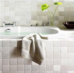 Limpieza de azulejos en cocinas y ba os mis trucos caseros y ecol gicos - Limpieza de azulejos de cocina ...