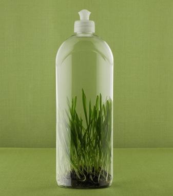 Productos de limpieza ecol gicos mis trucos caseros y - Productos de limpieza caseros ...