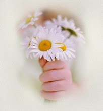 Gentileza gera gentileza. Adote esta idéia.