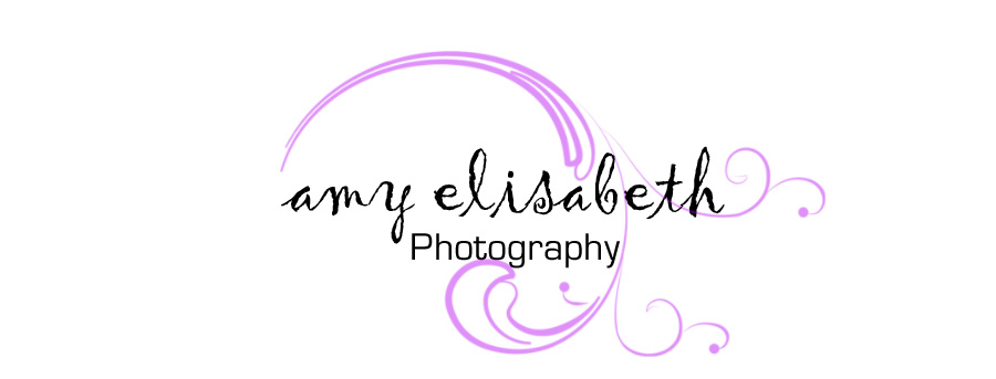 amyelisabethphotography