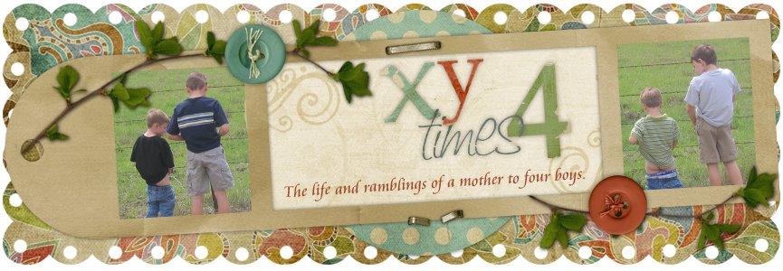XY times 4