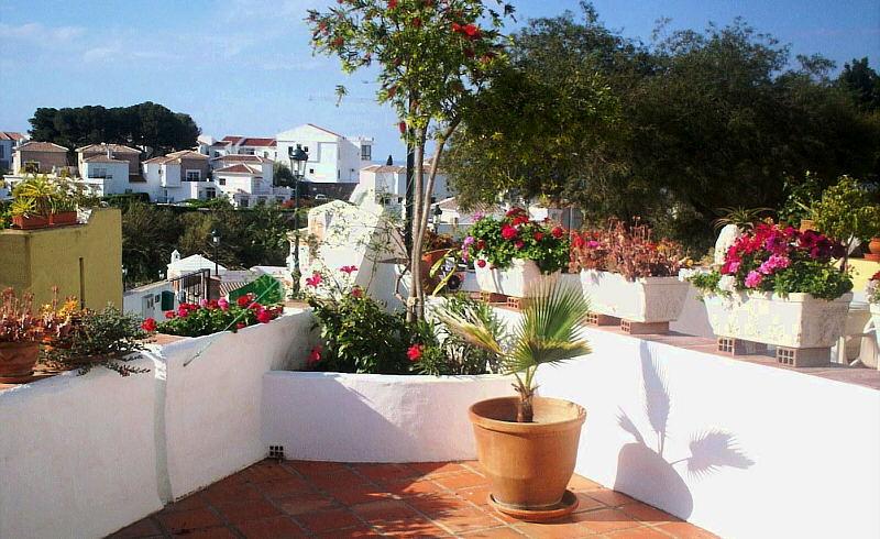 La terraza ajardinada plantas - Jardineras para terrazas ...