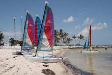 sailboats at Smathers