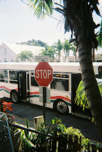 this bus stops for thee