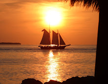 sunset sailing in key west.