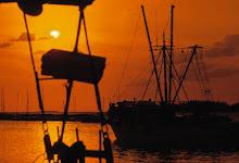 shrimp boats in the eighties.