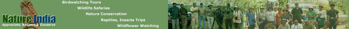 Nature India - Trip Experiences