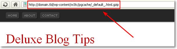 Fix URL Error In W3 Total Cache