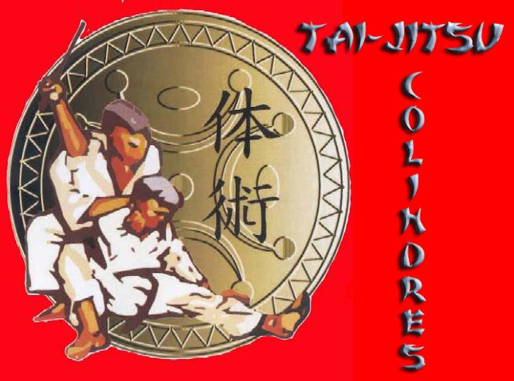 TAI-JITSU COLINDRES