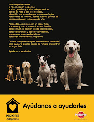 GRACIAS A PEDIGREE Y ACOGELOS.ORG POR SELECCIONAR A NUESTRO REFUGIO PARA LA DONACIÓN DE PIENSO