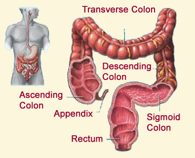 home remedy of swelling intestines