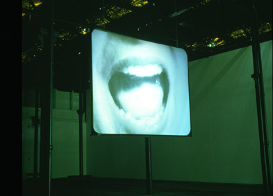 Douglas Gordon, '24 Hour Psycho'