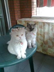 Mis niños: Roni y Cati