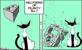 Hallmarks of felinity 02