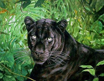 Leopardo melánico
