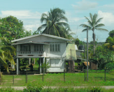 Traditional Homes in Guyana
