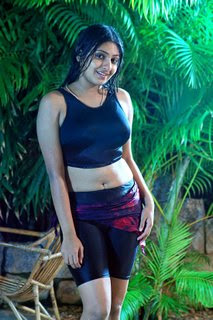 Tamil actress monica in hot Saree