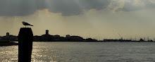 Sottomarina, laguna di Chioggia