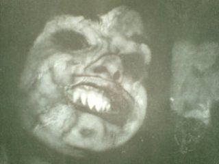 kalong wewe