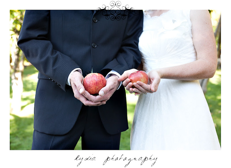 Bride and groom holding apples in an orchard at a Kenwood Farms & Gardens wedding