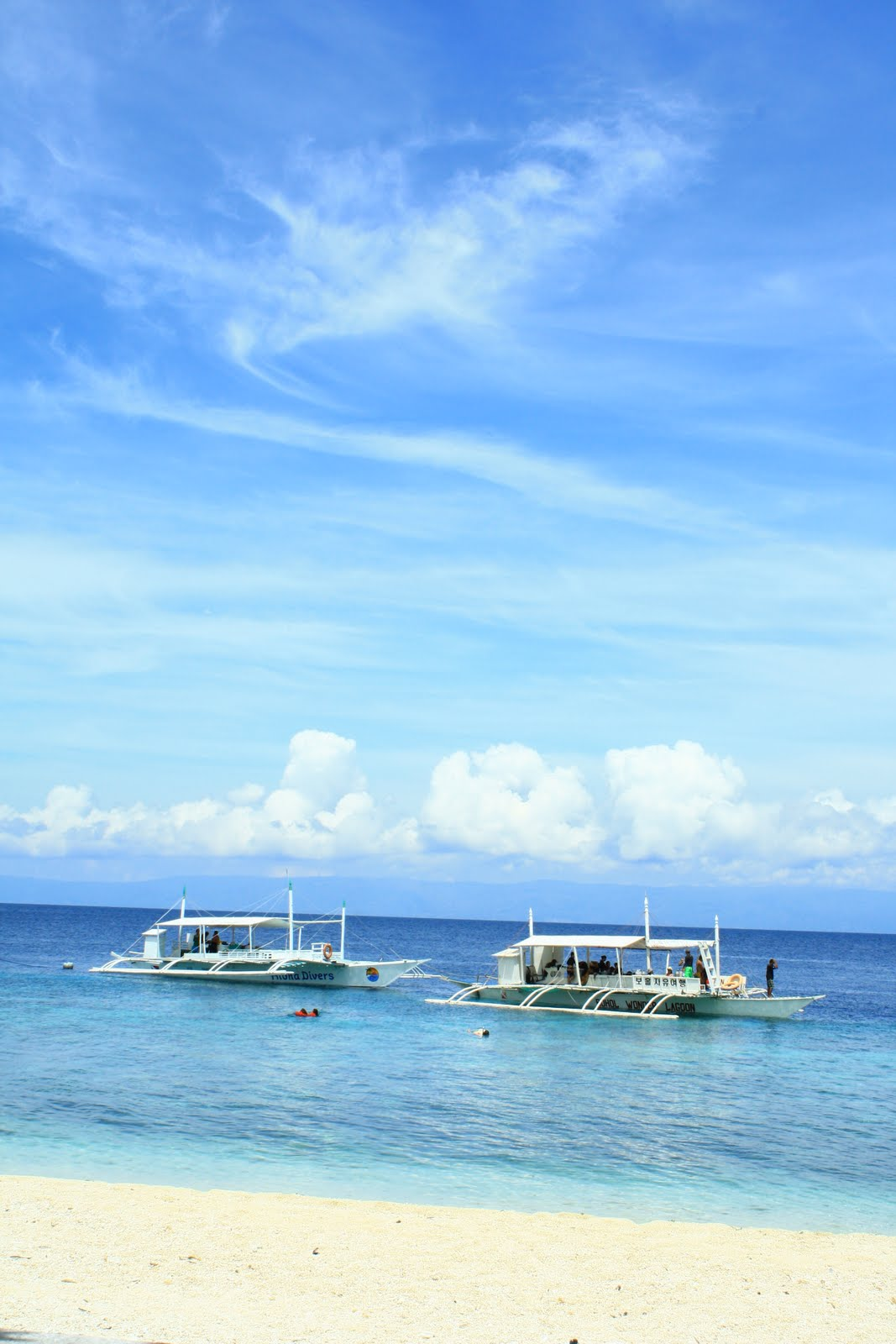 Balicasag Island Dive Resort Room Rates