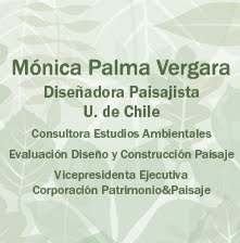 Blog de Monica Palma Vergara. Chile