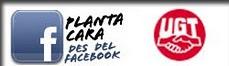 facebook ugt est
