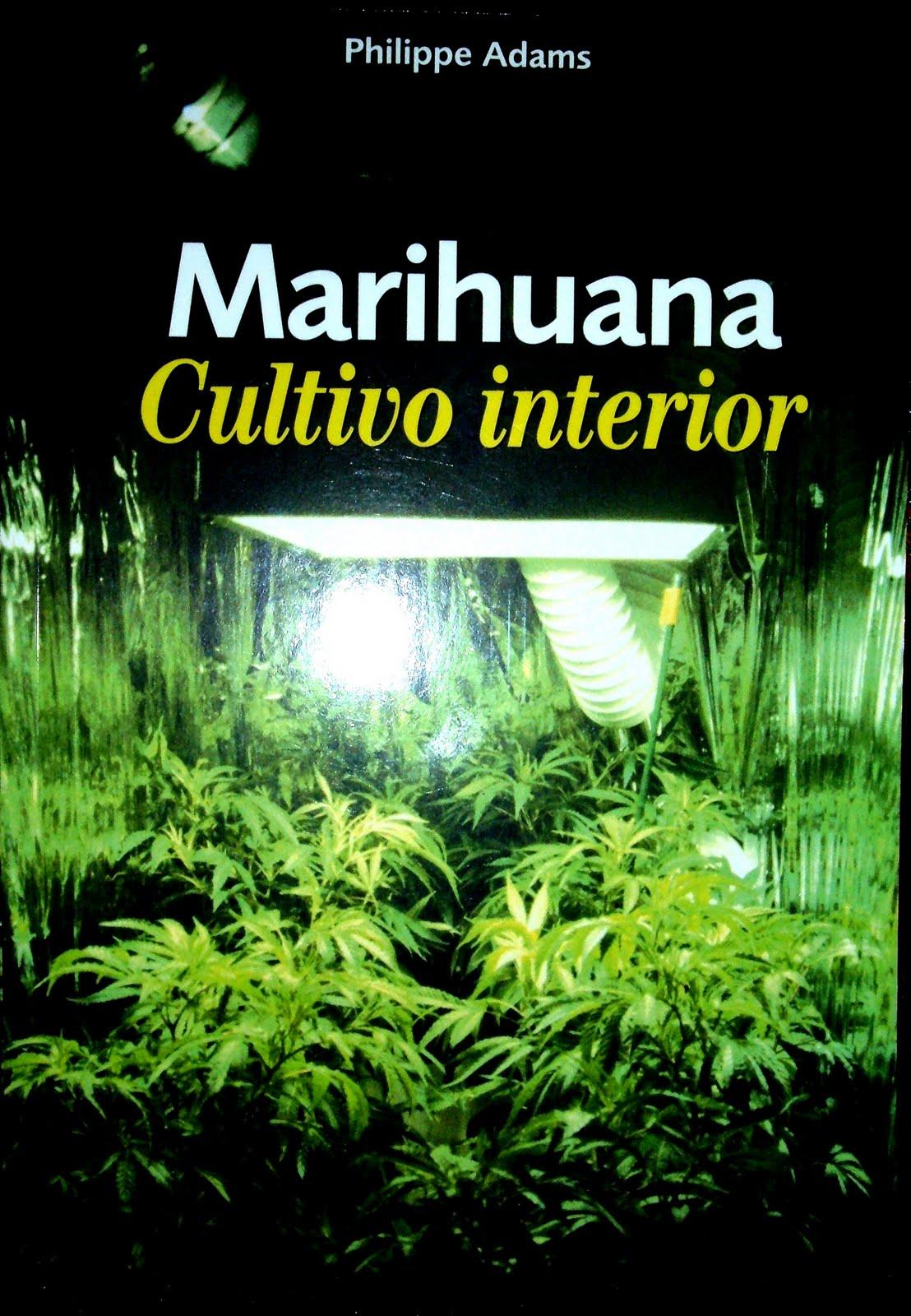 Pacha mama marihuana cultivo en interior es for Cultivo interior marihuana