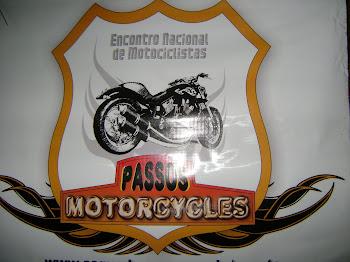 PASSOS 2010
