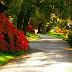 A Walk Through Villa Melzi Gardens