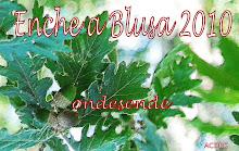 Enche a Blusa - 2010