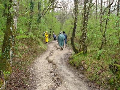 Peregrinos em contato direto com a natureza, em um dos muitos bosques cruzados no caminho. Foto: Dirce Bonfim