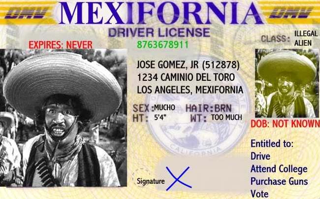 Mexifornia License