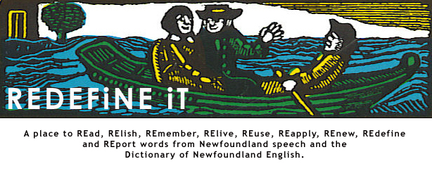 REDEFiNE iT: Dictionary of Newfoundland English