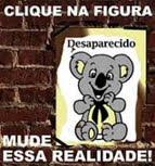 Anualmente, mais de 200.000 pessoas desaparecem no Brasil