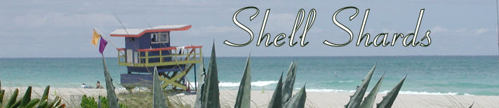 Shell Shards