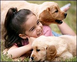 http://4.bp.blogspot.com/_NJiwBWJaD_k/TMZOnz9hFyI/AAAAAAAAABE/p9Yen8Xm0PE/s1600/nina-jugando-perros.jpg