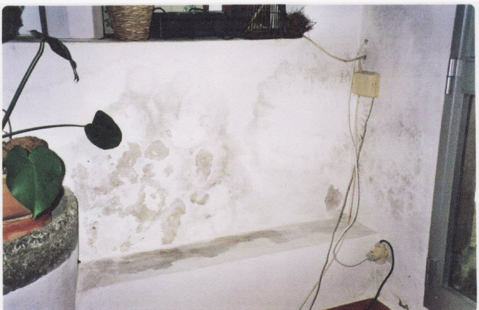 Pintura termoaislante anticondensaci n antimoho para - Leroy merlin pintura interior ...
