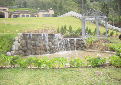 Oscar rodr guez jardines acu ticos for Jardines acuaticos