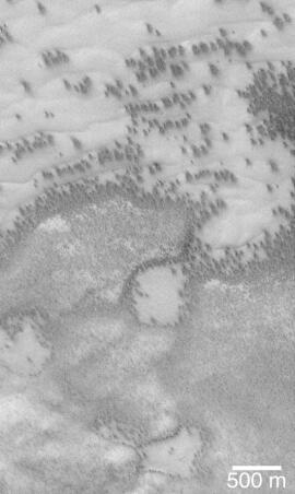 Mars Polar Dune