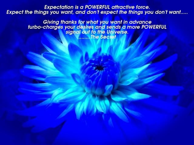 Expectation_A_Michael.jpg