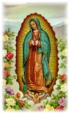 Mãe de Guadalupe.Rogai por nós!